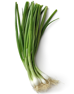 onions-green_commodity-page.png