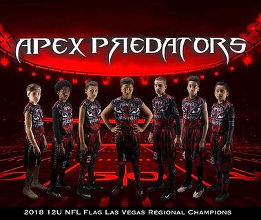 12U Apex Las Vegas Regional Photo.JPG