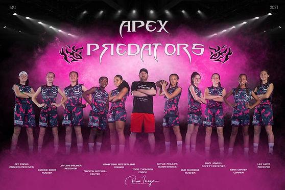 14U Lady Predators regular.jpg
