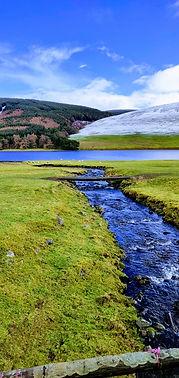 St Mary's Loch.jpg