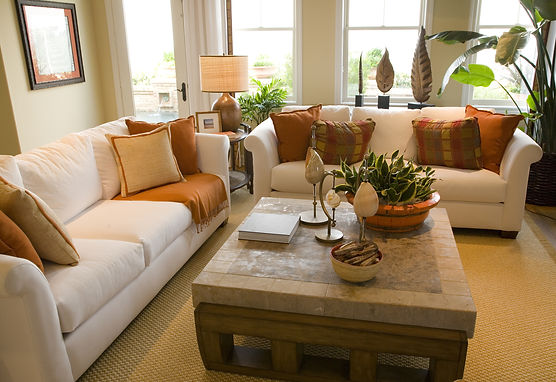 Upholstery Cleaning Poughkeepsie NY