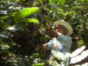 MEXICO2010-11 341.jpg