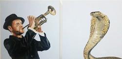 cobra e trompete