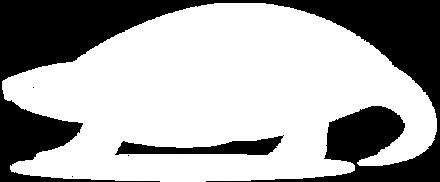 SnapperTail Logo