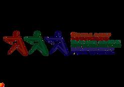 output-PIN Logo.png