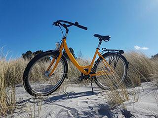 Pit's Fahrradverleih