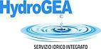 hydrogea.jpg