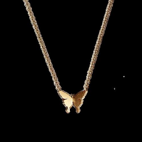 Modelo Borboleta Oro