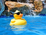 Bakersfield pool service, Bakersfield pool repair, Bakersfield pool cleaners, Bakersfield pool supply, Bakersfield pool pump, Bakersfield pool filter, Bakersfield pool tile, Bakersfield pool equipment, Bakersfield pools, Rosedale Pools
