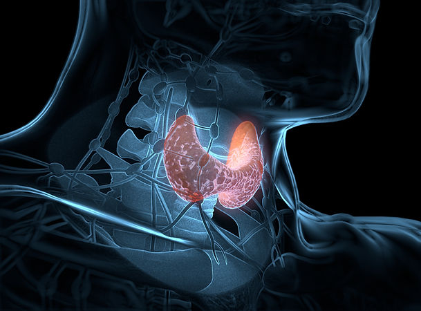 thyreoeidektomi.jpg