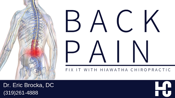 HC Low Back Pain Articla Pic.png