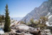 california-419-2.jpg