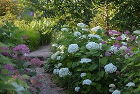 Сады Людмилы Бубаник