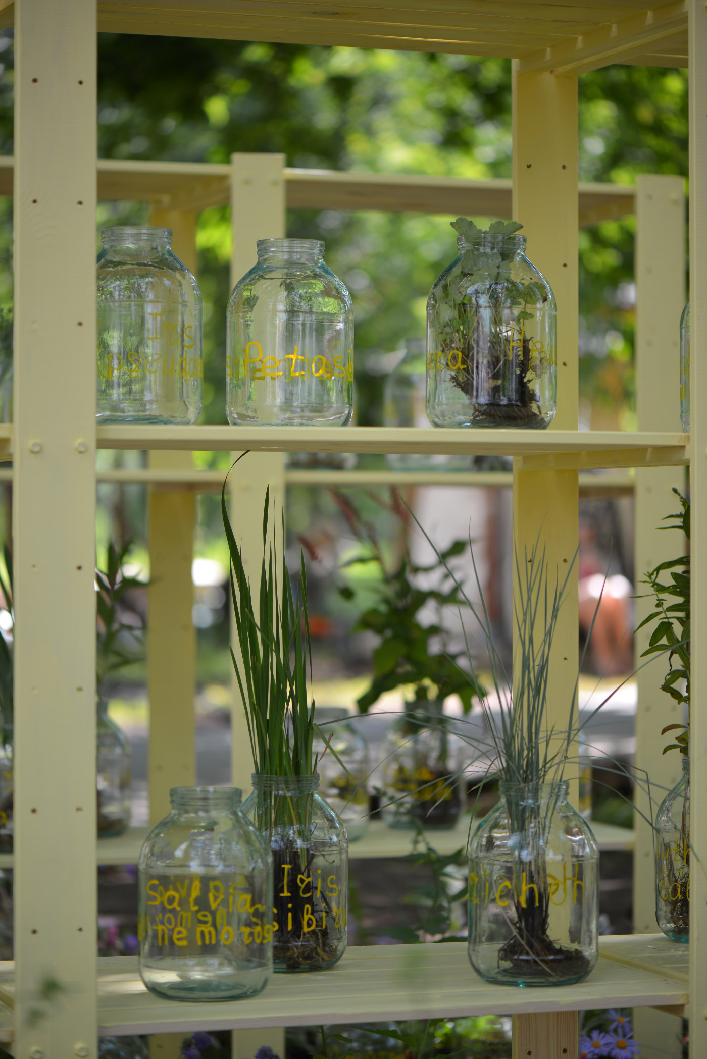Moscow Flower Show 2015