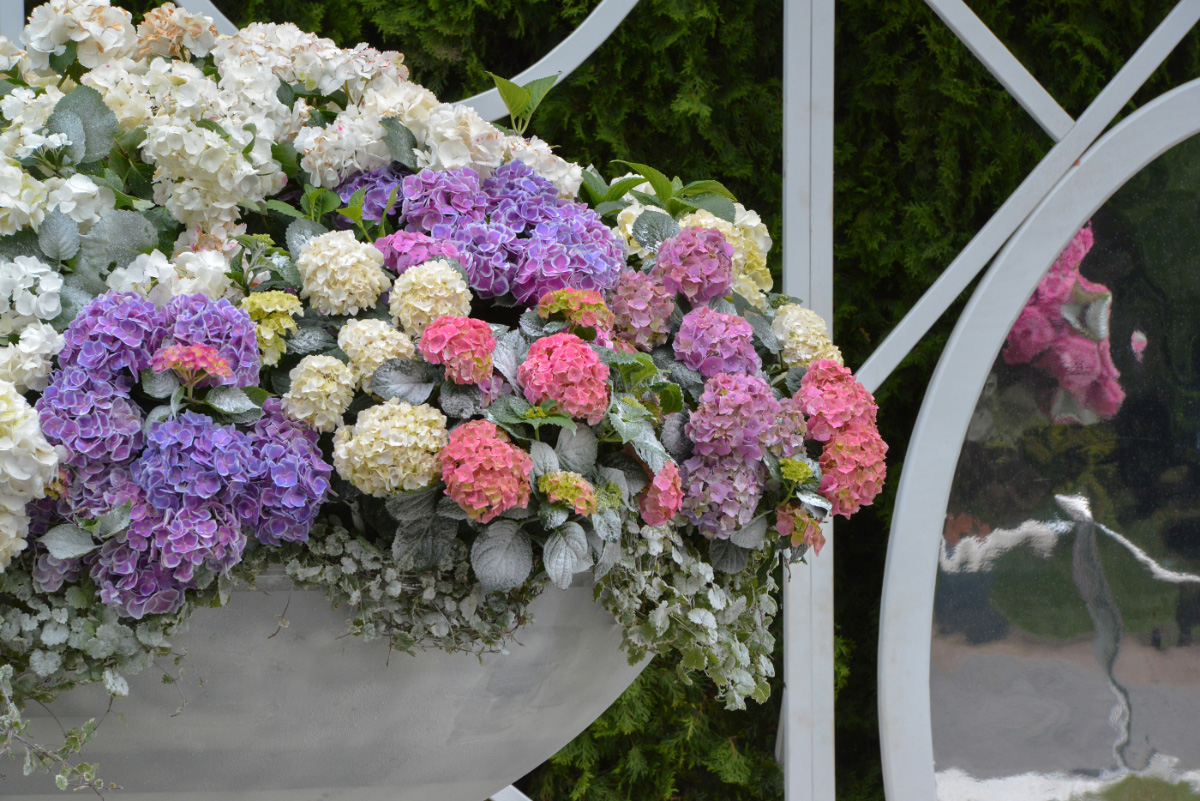 Moscow Flower Show2019