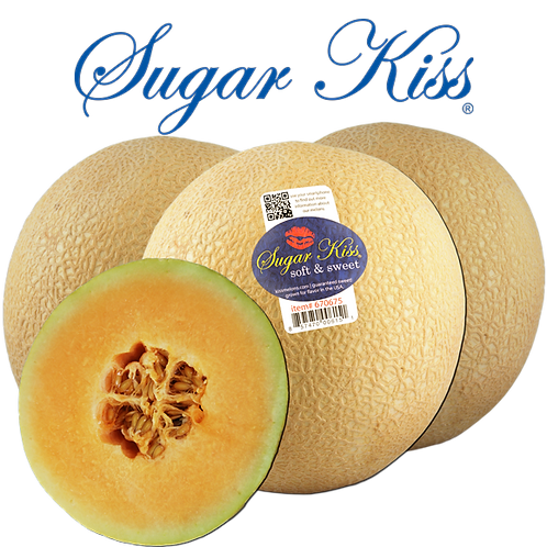 ONLINE - MELONS - Sugar Kiss 3-Pack