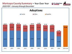 FAS 2020 - Adoptions.JPG