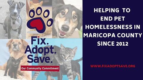 Fix.Adopt.Save. Community Impact