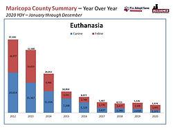 FAS 2020 - Euthanasia.JPG