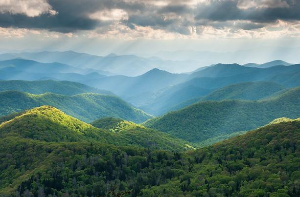 Western_North_Carolina_forest.png
