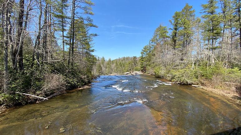 Asheville Trails & Taps 2021