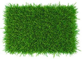 What is the difference between synthetic grass, artificial turf, fake grass and AstroTurf?