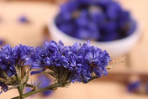 Don´t forget me dried flowers