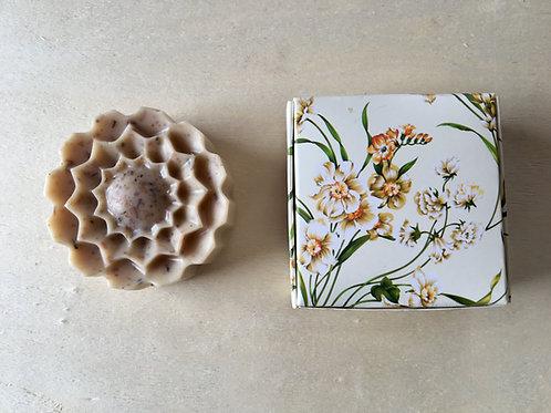 Organic Soap Box