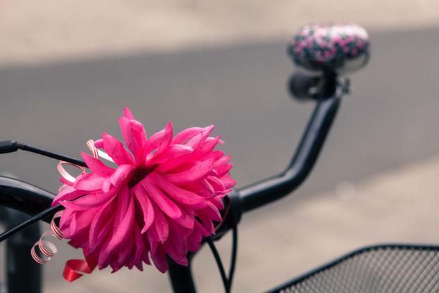 Detail - Susanna Hiss Photography - Bikesl