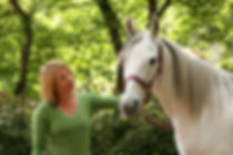 Kids, horses, therapy, therapeutic, riding, disability, volunteer, donate, nonprofit, free, Christian, equine, program, mission, autism, riding lessons, stable