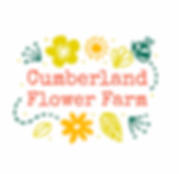 Cumberland Flower Farm_Digital_Logo_Squa