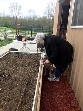 Nancy Garden 2.jpg