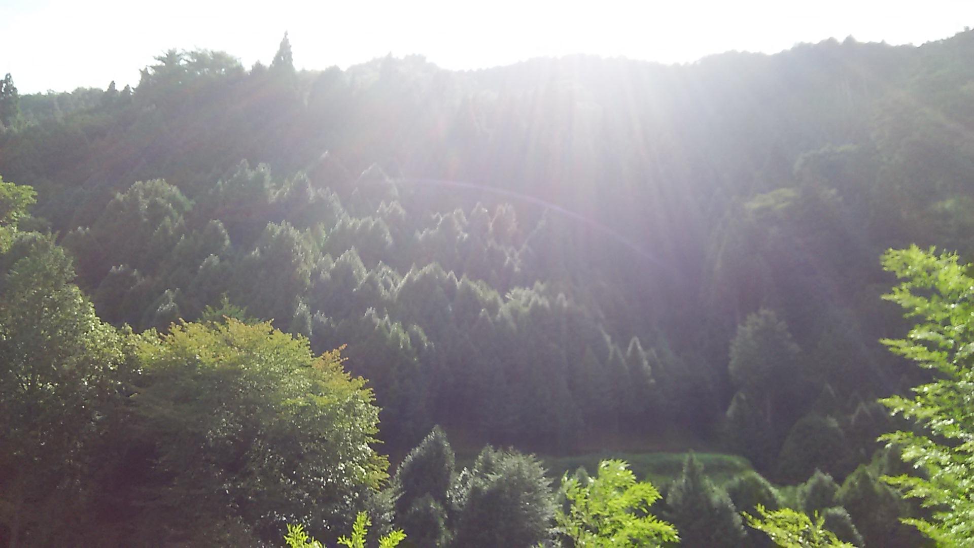 高野山の光芒