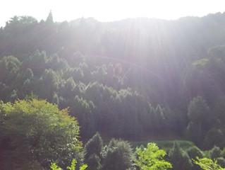 eternalwingと高野山
