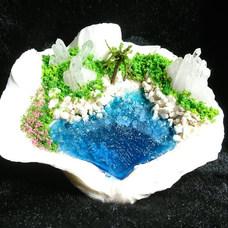 しゃこ貝の島