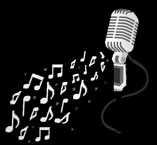 Microphone for Karaoke in Beaver Bar Banff