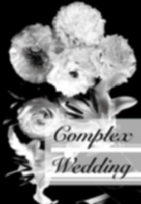 Complex Wedding_view1.jpg