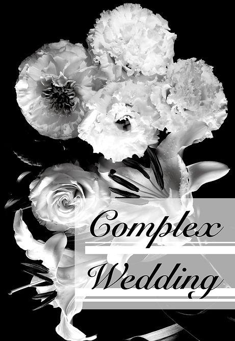 Complex Wedding_view1.jpg
