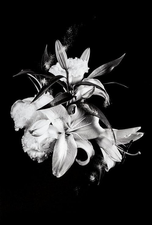bouquet_black_72dpi.jpg