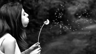 Mudar, fazer acontecer, acordar, os sonhos não morrem!