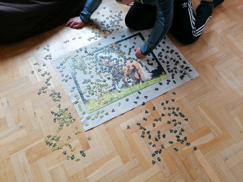 Tairychs-Puzzle-bauen.JPG