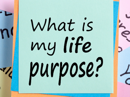 What Is the Purpose of Life