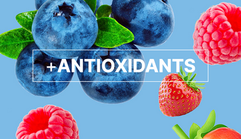 All the antioxidant power your body needs from super fruits like acai, goji, acerola and maqui berries.