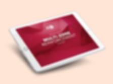iPad_Rhenoflex_NEU.png