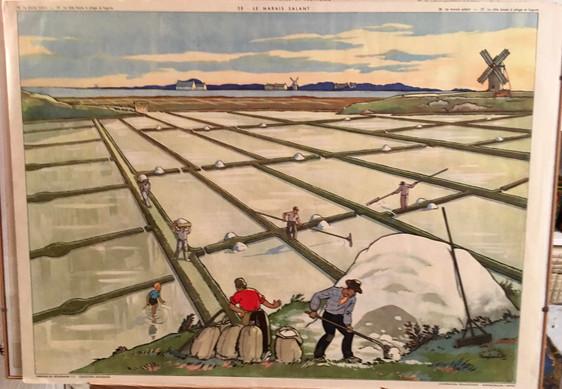 1953- 38 LE MARAIS SALANT.jpg