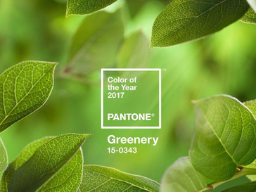 Pantone Colour of the Year: 2017 Edition