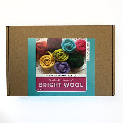Needle-Felting Basics Kit - Selection of bright wool and needle-felting needle
