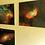 Thumbnail: The Tulip Nebula