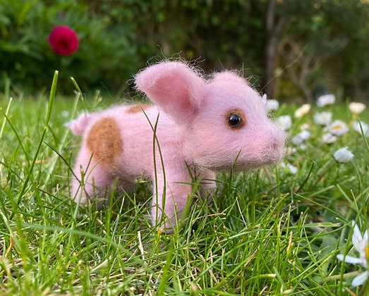 Jasper the Piglet