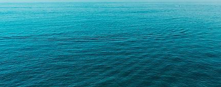 lake-michigan-salmon-fishing-charters.jp